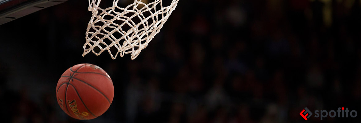 Basketball Sports Goods Online at Spofito